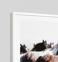 Galloping Ponies