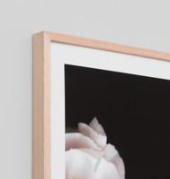Rose Noir 1 Detail | Print Decor