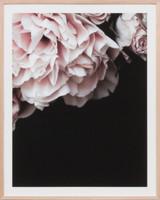 Rose Noir 2 | Print Decor