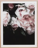 Rose Noir 4 | Print Decor