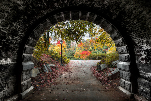 Photography | Central Park Underpass | Nick Psomiadis