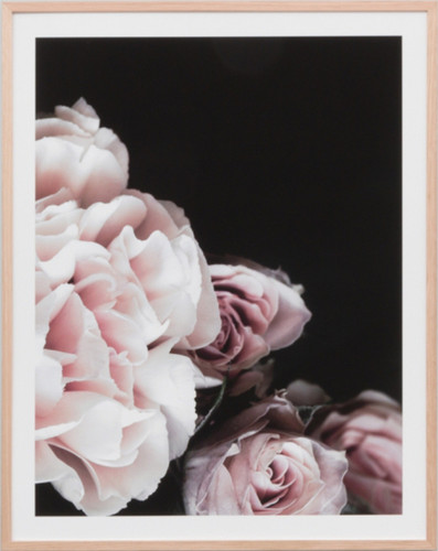 Rose Noir 1 | Print Decor