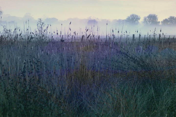 -modern-landscapes-by-jan-neil-print-decor-7.jpg