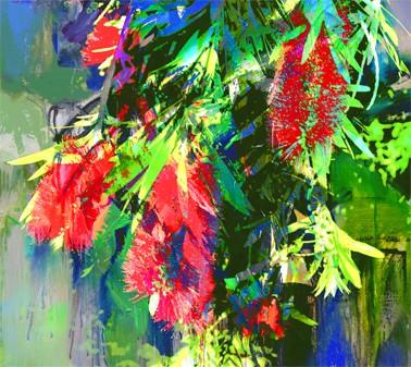 Bright colours of Australian flora, Bottle Brush by Jan Neil, modern art, Print Decor Melbourne