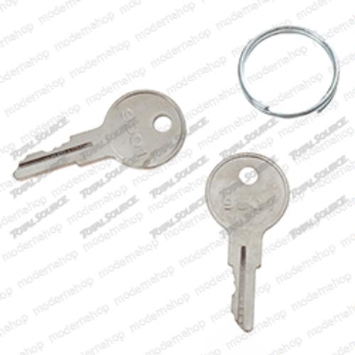 2860030: C-Tech KEY - SPARE (SET OF 2)
