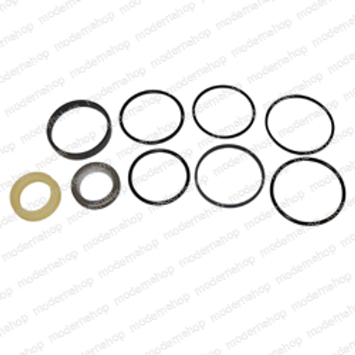 128728A1: Case SEAL KIT - HYDRAULIC CYLINDER