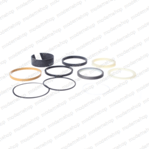 1542923C2: Case SEAL KIT - BUCKET CYLINDER