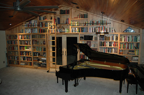 Rolling Library Ladder in a home library