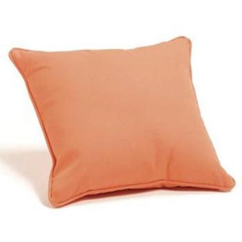 """Sunbrella 24"""" Outdoor Throw Pillow"""