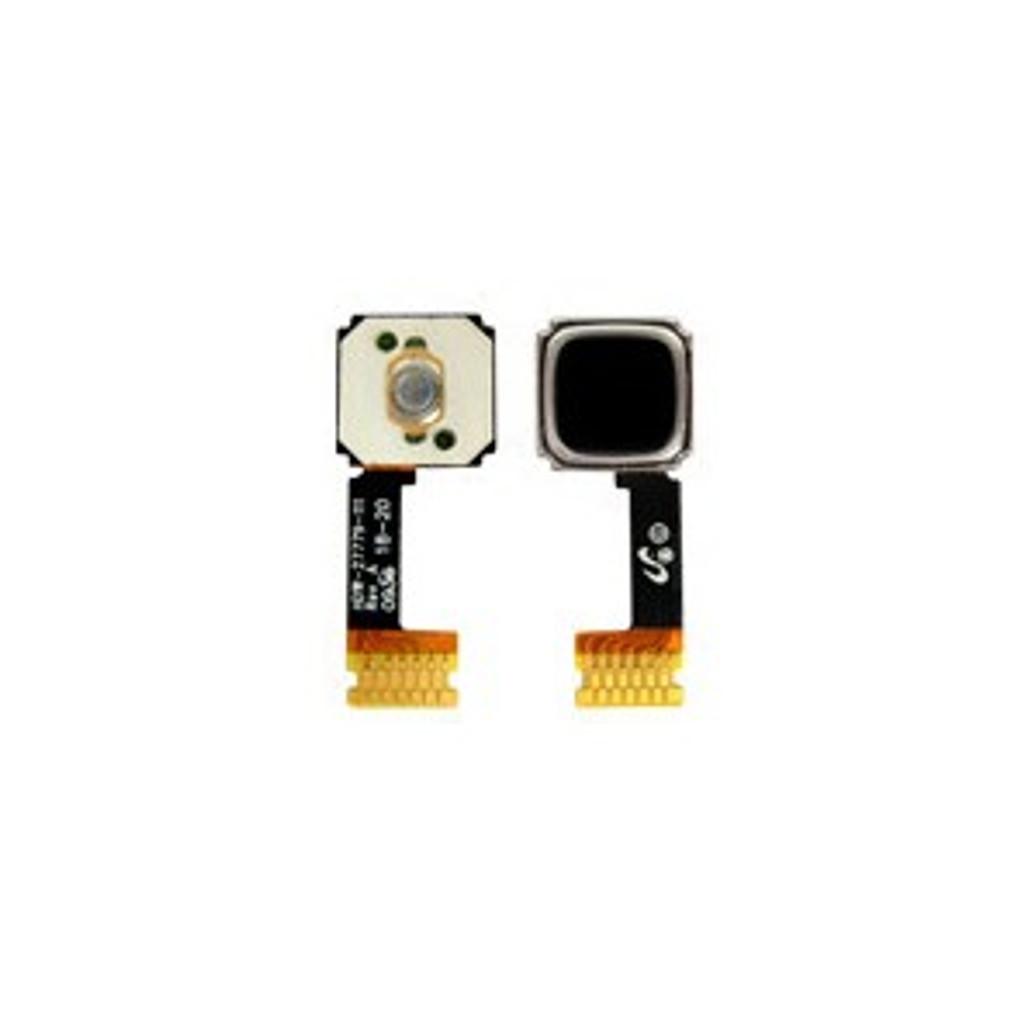 Trackball Trackpad Flex Cable for BlackBerry 9300 / 9800