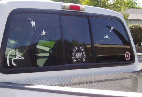 Truck Window Sticker