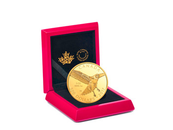 2017 $500 PURE GOLD COIN – RED TAILED HAWK
