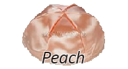 PEACH Satin Yarmulkes - With Colored Rim