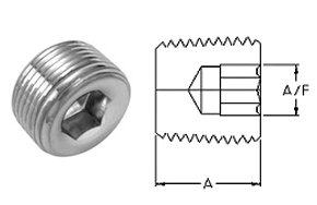 Stainless Steel Threaded High Pressure Hollow Hex Plugs