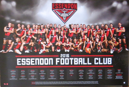 AFL - 2016 Team Poster-Laminated availables Essendon-Poster-Laminated available-91cm x 61cm-Brand New