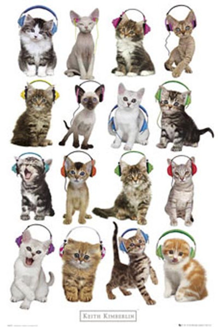 Keith Kimberlin - Kittens Headphones-Poster-Laminated available-91cm x 61cm-Brand New-GN0663