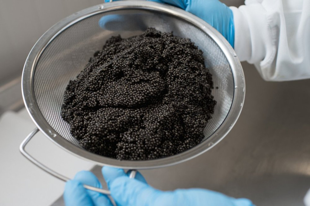 Where's the best place to buy caviar? Farms and Fisheries v.s. Retailers