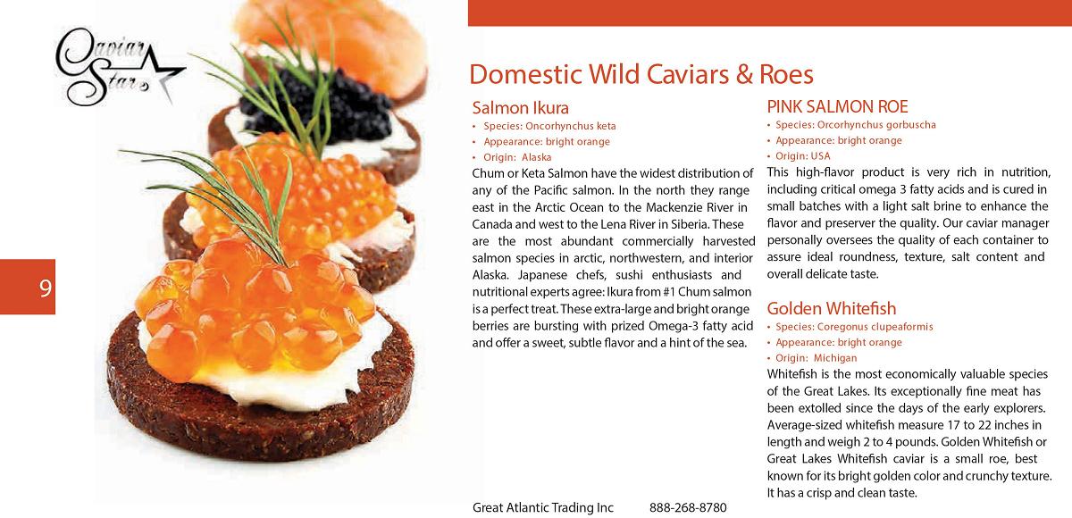 caviar-star-catalog-10.png
