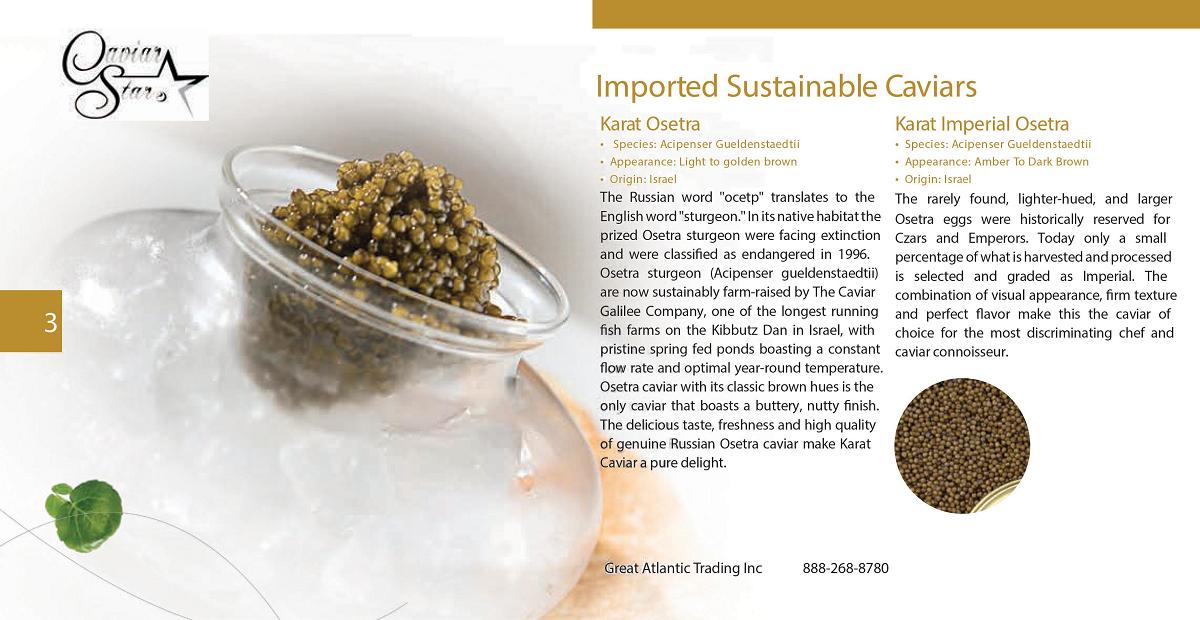 caviar-star-catalog-4.png