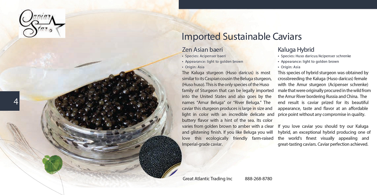 caviar-star-catalog-5.png