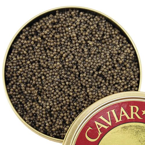 caviarstarpaddlefish-14862.1461347273.jpg