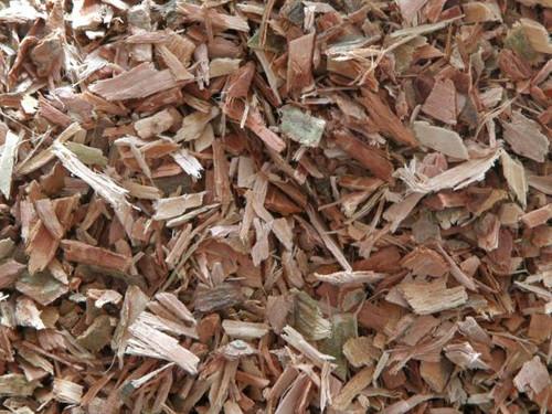 White Willow Bark ~ Herbal Alchemy