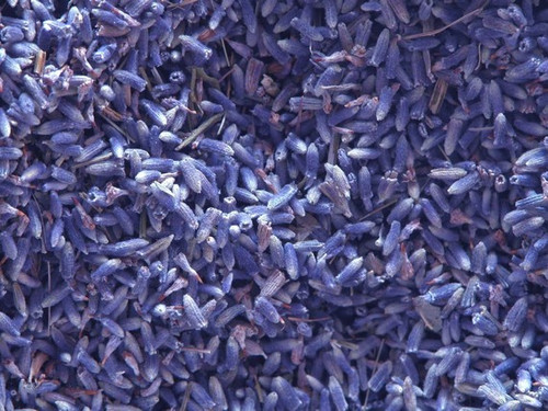 Lavender Flowers ~ Herbal Alchemy