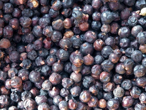 Juniper Berries ~ Herbal Alchemy