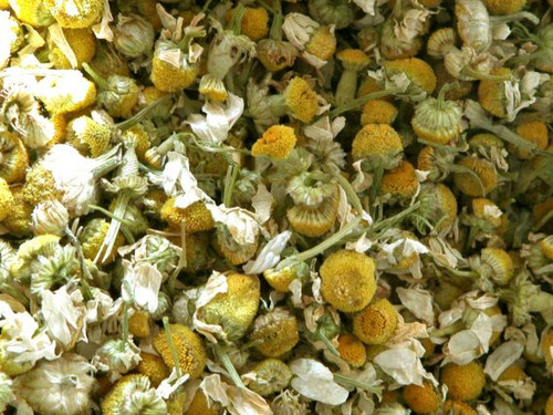 Chamomile Flower ~ Herbal Alchemy