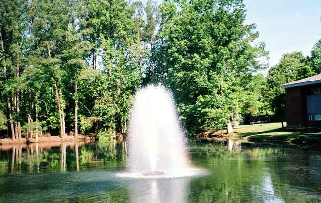 8400jf Kasco Fountain Birch Display