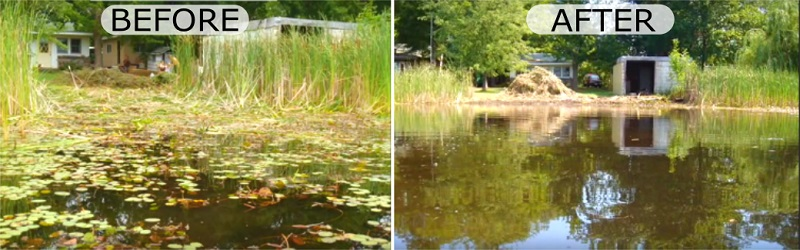 Aquatic Vegetation Groomer Cutting Cattails