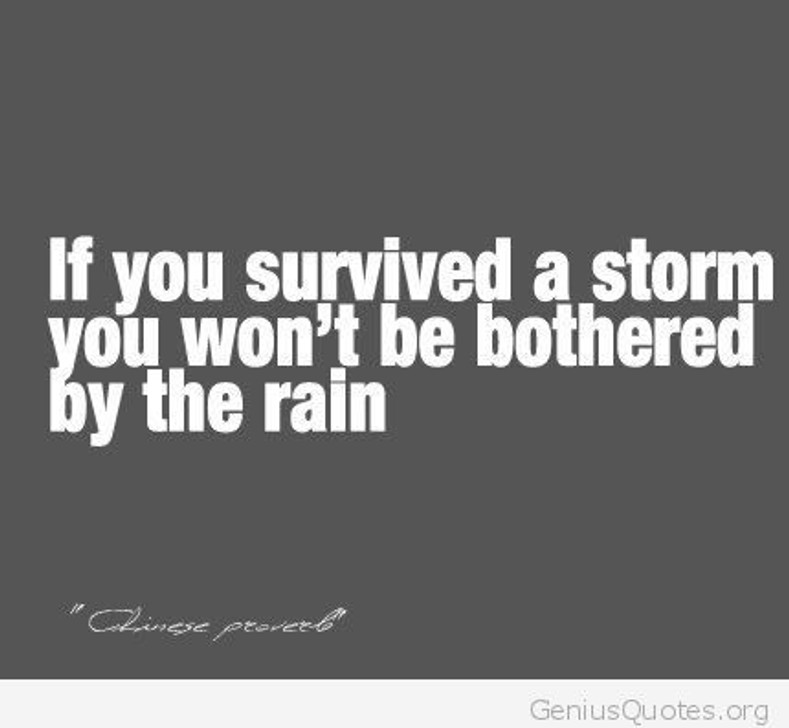 Survived Hurricane Irma