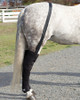 https://d3d71ba2asa5oz.cloudfront.net/12002466/images/ice-horse-full-coverage-hind-leg-wraps-52__17674.jpg