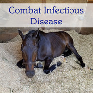 Combat Infectious Disease! Lower your horse's risk.