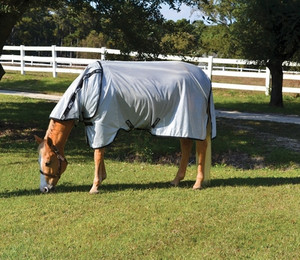 https://d3d71ba2asa5oz.cloudfront.net/12002466/images/amigo-stock-horse-fly-sheet-1__57613.jpg