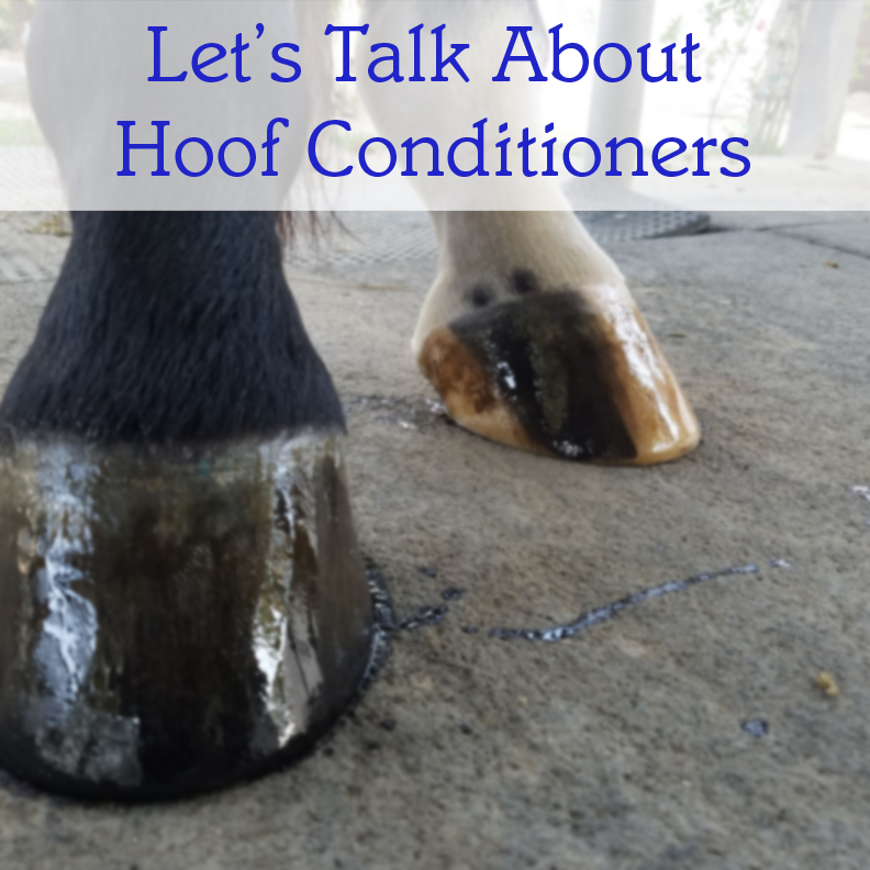 Let's Talk About Hoof Conditioners