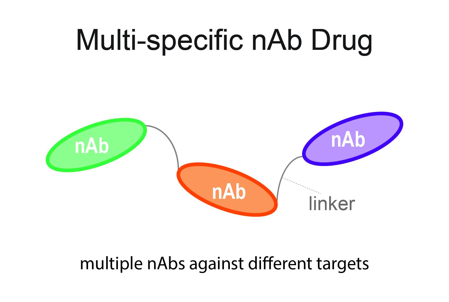 multi-specfic nAb drug