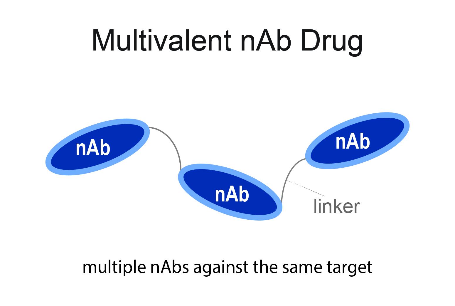 multivalent nAb drug