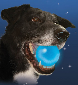 NiteIze Meteorlight K-9 L.E.D. Dog Ball