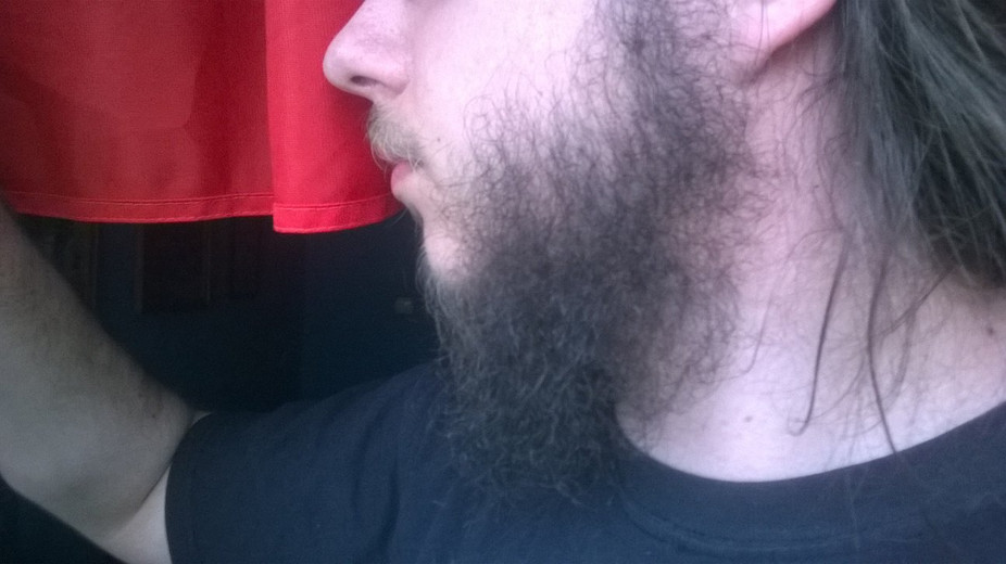 5 Common Mistakes to Avoid When You're Growing A Beard