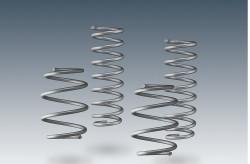 AC Schnitzer Suspension springs for MINI Countryman (R60) 2WD