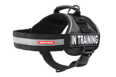 "Convert Harness With ""In Training"" Side Badge"