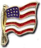 Cast American Flag Pin