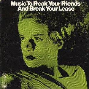 HEINS HOFFMAN-RICHTER Music to Freak your Friends and Break your Lease CD-R