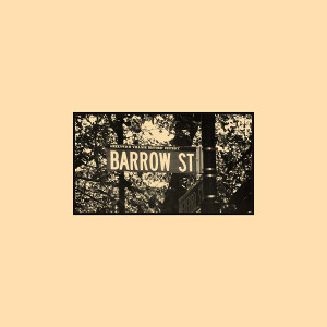 JOE MCPHEE SURVIVAL UNIT III Barrow Street Blues 2LP