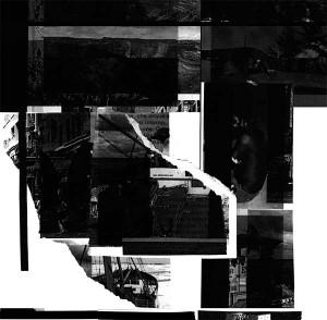 TRERIKSROSET: Heteronormativ Musik For Att Starka Medelklassens Sjalvbild LP