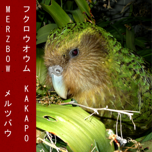 MERZBOW: Kakapo (Green Vinyl) LP