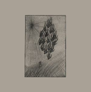 AINE O'DWYER: Locusts LP