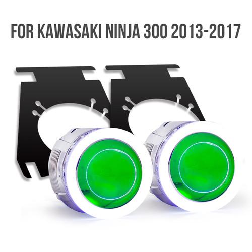 Kawasaki Ninja 300 2013-2017 projector