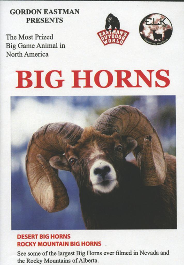 BIG HORNS DVD
